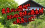 【速報】黄泉からの恐怖!! おおかみ崇拝の藤良村は実在した!!【恐怖】 #4fooljp #aprilfool #エイプリルフール